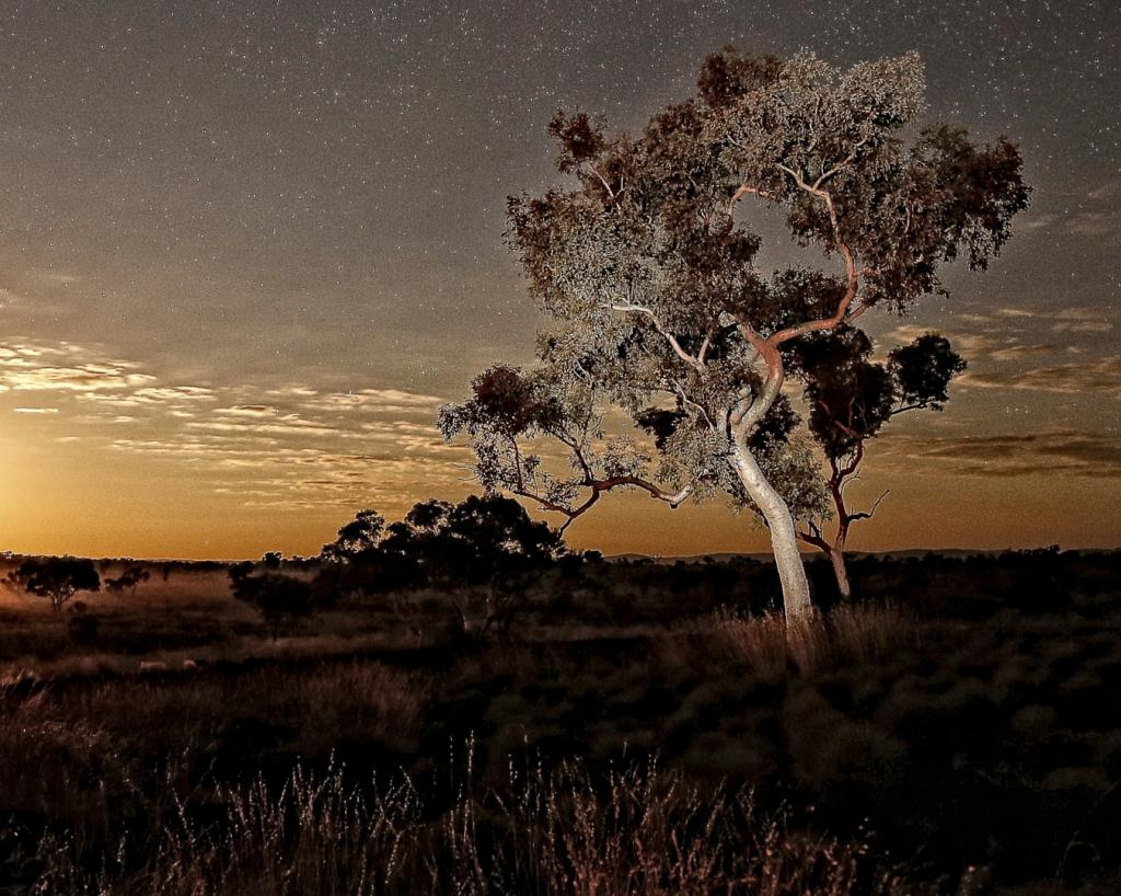 Pilbara by Night by Helen Ansems