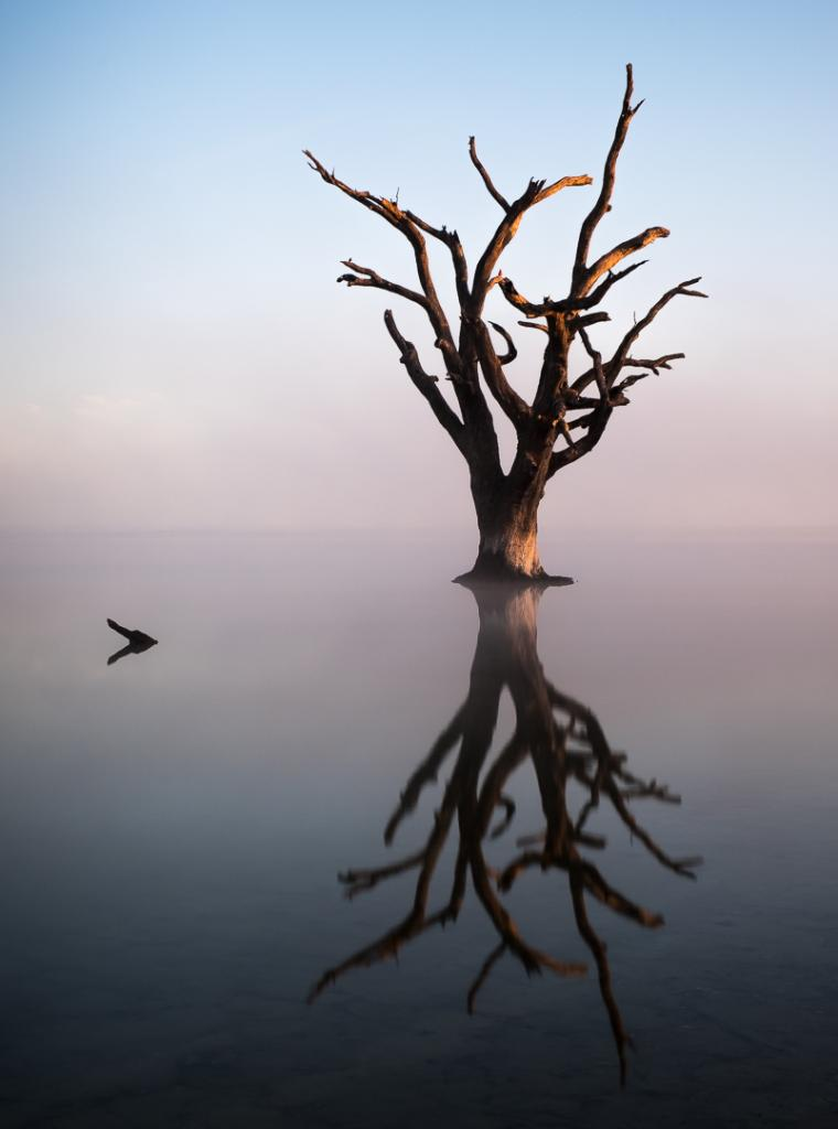 Riverland Sentinel by Brian Seddon