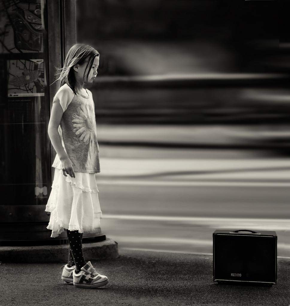 A Girl and a Case by Peter Hammer