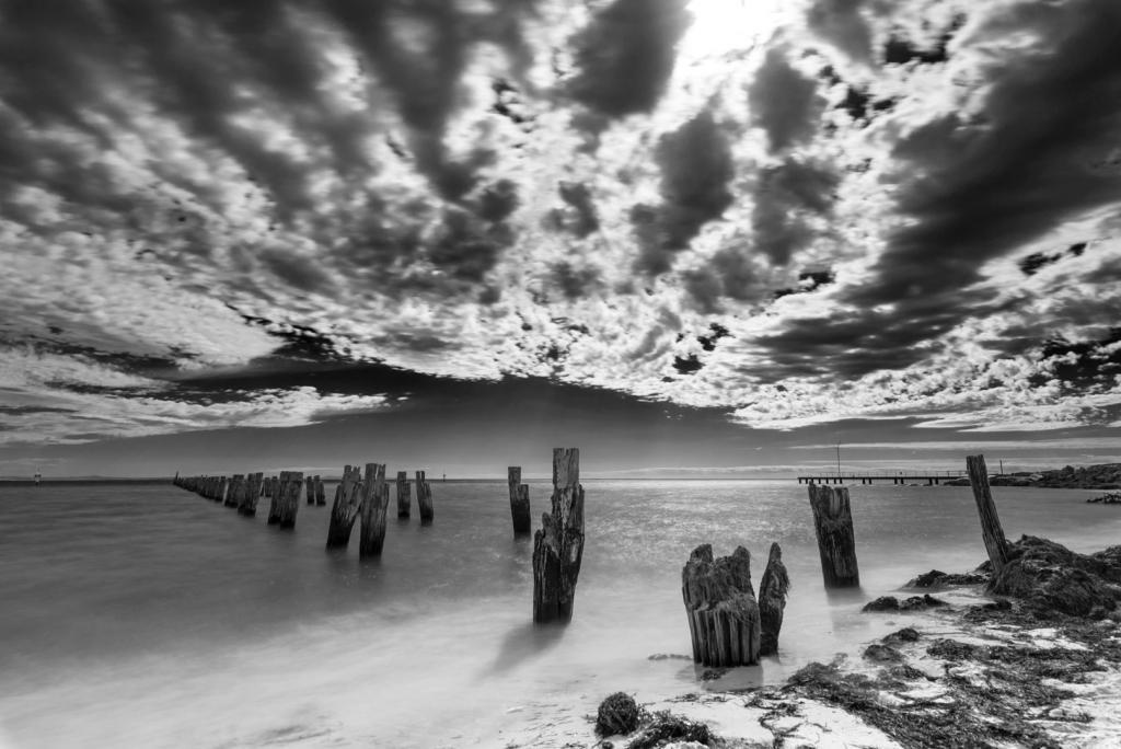 Grey Poles by Graeme Addie