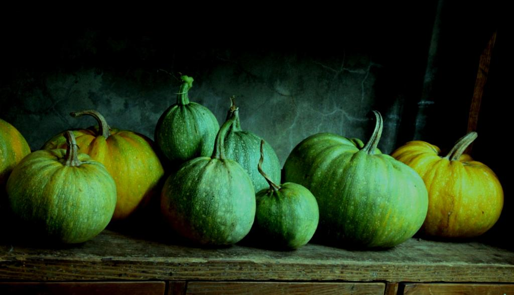 Mystic Pumpkins by Chris Fitzgerald