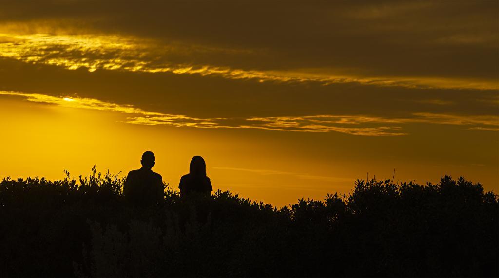 Sunset Silhouette by Liz Furey